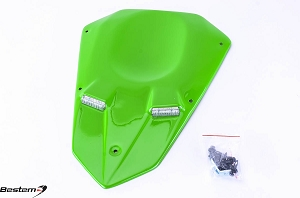 Kawasaki ZX10R 04-05 Undertail Green F40